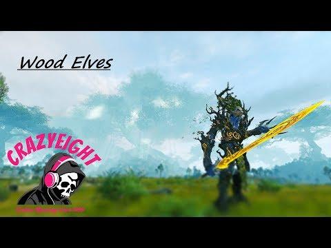 Total War: Warhammer 🍂 Close-Up Ranked Battle 🍂 Wood Elves vs. Vampire Count