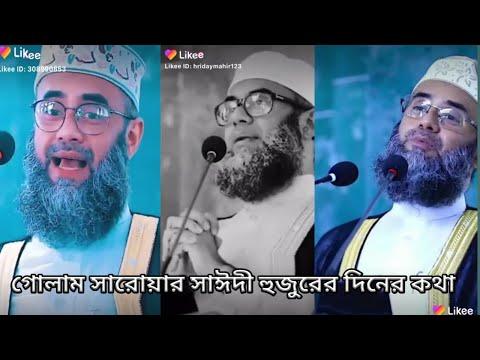 golam sarwar saide emotional tiktok viral waz video গোলাম সারোয়ার সাইদী হুজুরের ওয়াজ লাইকি ভিডিও