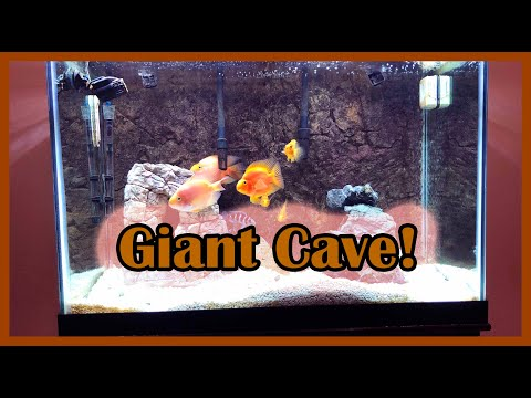 Blood Parrot Tank, New Cave + Rocks!