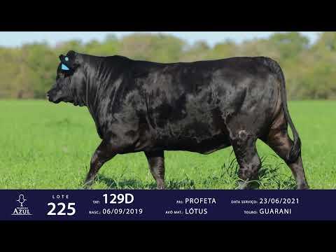 LOTE 225 - TAT 129D