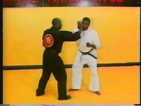 David James   Vee Arnis Jitsu Vol  1   Concepts Part 1