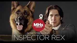 """MHz Choice - """"Inspector Rex"""" Tease"""