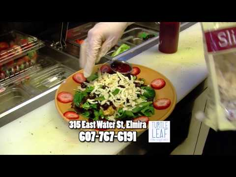 Turtle Leaf Cafe Commercial March 2015