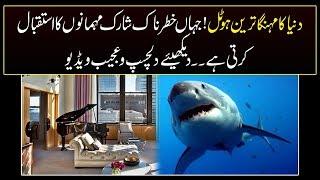Jaago Lahore - Part 01 -  WORLD'S MOST EXPENSIVE HOTEL SUITE IN LAS VEGAS