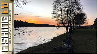 Ловля СУДАКА теплой зимой на донки с берега zandartu cope Lielupē