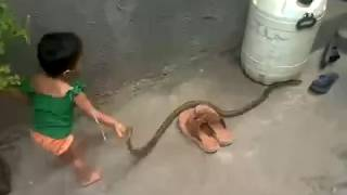 young kid play with snake whatsapp funny videos