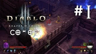 Diablo 3: Ultimate Evil Edition Co-op Gameplay Part 1 (PS4)