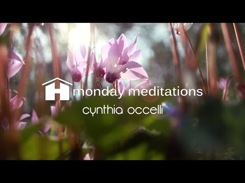 Connect with Your Inner Goddess | Cynthia Occelli | Monday Meditation