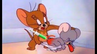 Tom and Jerry 2018  Ma Ma  Cartoon For Kids