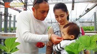海老蔵さん、麻央さん、麻耶さん、家族でいちご狩り (2014年3月) thumbnail