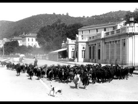 Les Tomasi, L'héritage d'un regard (Version HD)