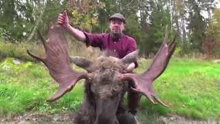 Hunting in Sweden! Jakt i Sverige, blandade klipp. Jaktåret 2…