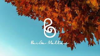 🌰파란 가을 하늘을 보며 듣는 피아노 뉴에이지 l 마음이 여유로워지는 연주곡