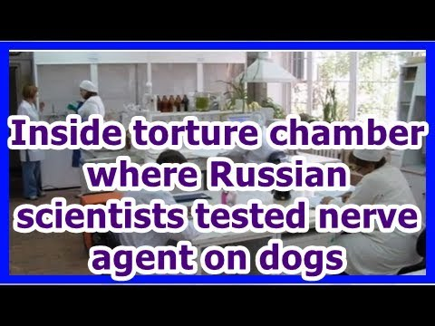 24h News - Inside torture chamber where Russian scientists tested nerve agent on dogs