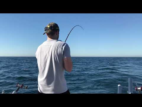 Confusion Fishing Charters - Six Person Limit Trip 30 Fish - Chicago, IL - 7/8/18 (4K)