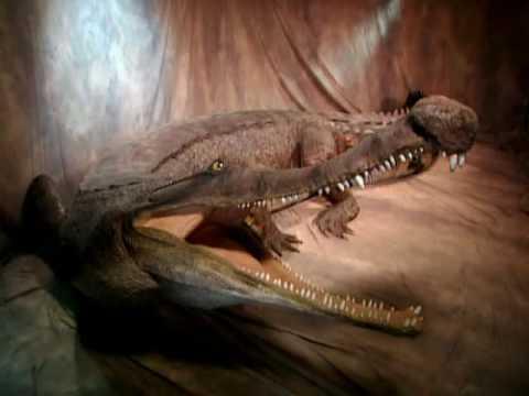 (6) El Cocodrilo que comía Dinosaurios - SuperCroc