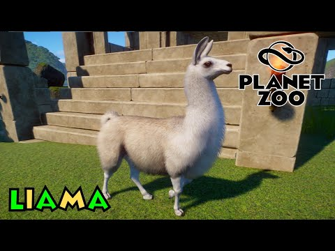Planet Zoo- South America Pack Overview- Llama |