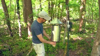 checking mosquito trap