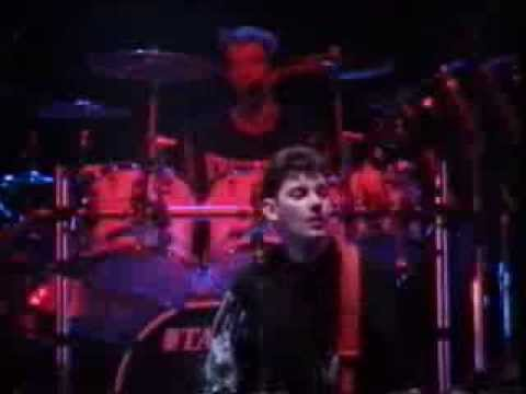 Stiff Little Fingers - Fly the Flag (Live)