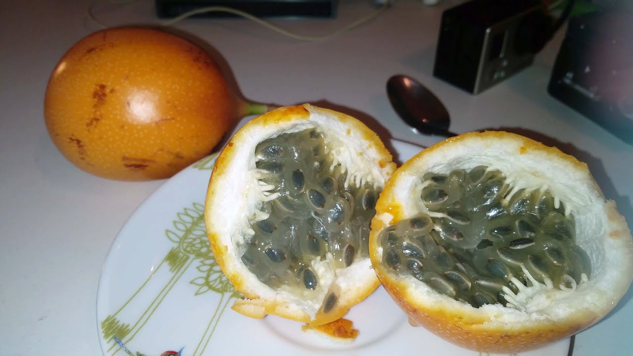 La Grenadille Jaune Le Fruit Le Plus Delicieux Au Monde Youtube