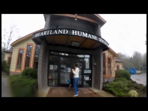 Heartland Humane Society Wine & Whiskers 2015 - Take Me Home Tonight