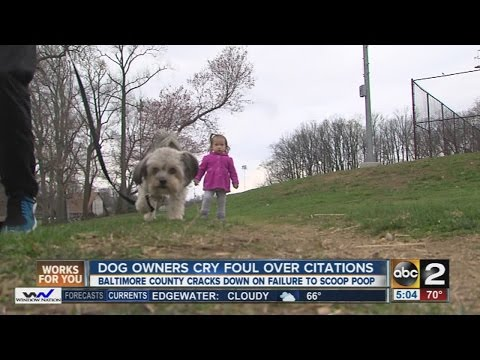 Baltimore County cracks down on failure to scoop poop