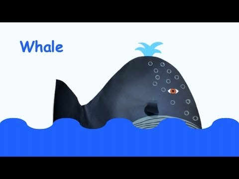 Earth Day Activity : Endangered whales