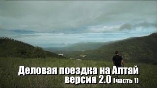 Деловая поездка на Алтай - версия 2.0. Часть I - Горный Алтай. Кедр которому 1000 лет!