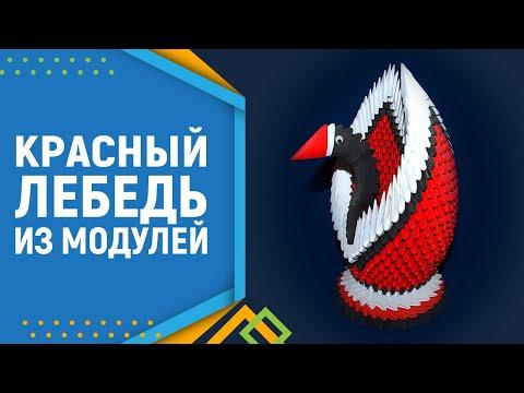 Лебедь из модулей оригами пошаговая инструкция 3 д