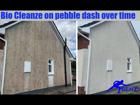 How to soft wash pebble dash (dry dash) wall render with Bio Cleanze