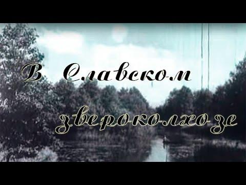 Звероколхоз Славск. Калининградская область.1950 год