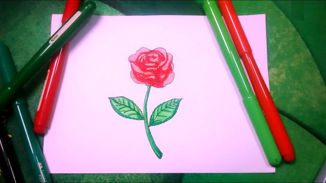 Aprende a dibujar flores pasa paso 2/2 - Una rosa con colores - YouTube