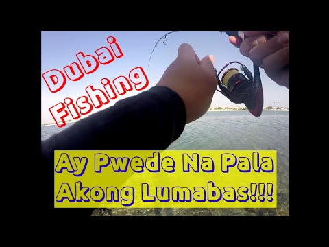 First day of fishing after Quarantine | Dubai Fishing | Shore Fishing