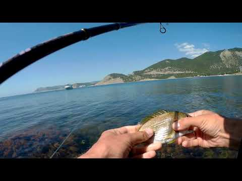 Рыбалка на море в Анапе. Большой Утриш. Rockfish.