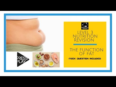 Level 3 Nutrition Revision  - The function of fat