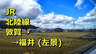 車窓動画] JR北陸線 [敦賀→福井] 普通 左景/ JR Hokuriku Line [Tsuruga →Fukui] Local-Train (Left- View)  Fukui, Japan.