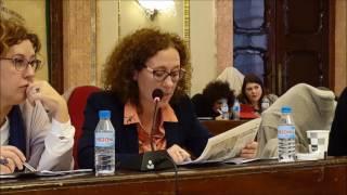Pleno febrero 2017 - Defensa moción urgencia dimisión PAS