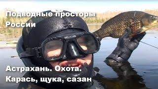Астрахань Охота Карась щука сазан Подводные просторы России