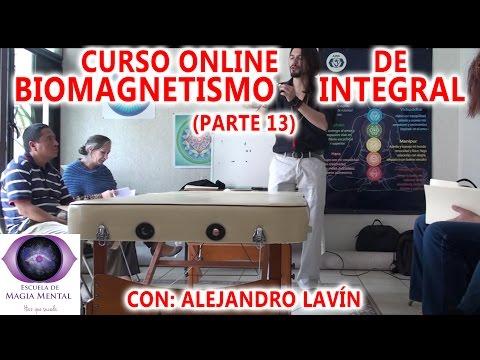 biomagnetismo-integral-(curso-completo)-parte-13---alejandro-lavín