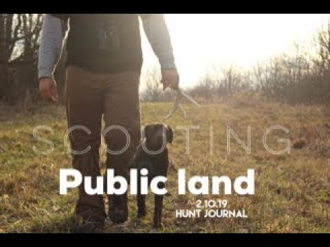 Scouting public land hunting journal 2.10.19
