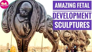 Amazing Fetal development sculpture in Sidra Medical Center | Damien Hirst foetus sculpture in Qatar
