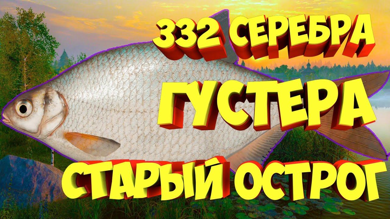 русская рыбалка густера