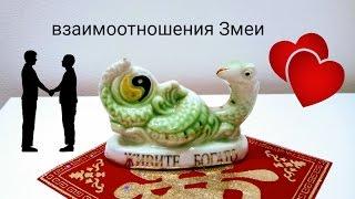 Взаимоотношения рожденных в год Змеи