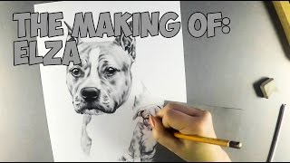 American Staffordshire Terrier Speed Drawing