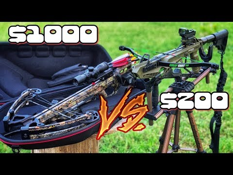 Cold Steel Cheap Shot Vs Expensive Crossbow SHOWDOWN!
