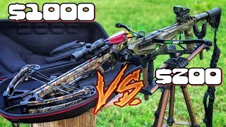 Cheap Crossbow vs Expensive Crossbow Which is Better?