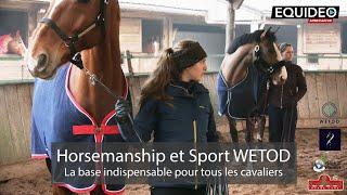 Comment communiquer correctement avec votre cheval ou poney ?