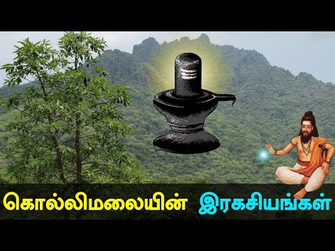 Kollimali Secrets and History of Kollipaavai in Tamil #kollimalai