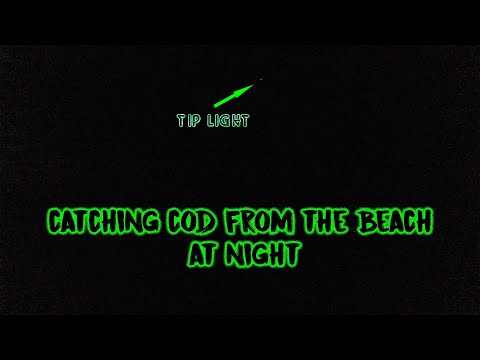 Beach Fishing For Cod At Night