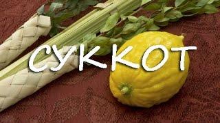 Как заговорить на иврите - Урок Иврита - Праздник Суккот